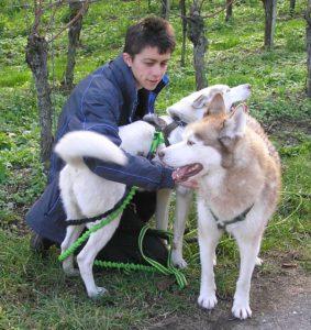 Maaike en Tjakkar en Aïsha: geen gehoorzaamheid zoals op de hondenschool, maar fijne onderlinge relaties